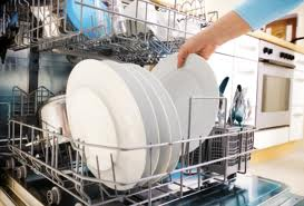 Dishwasher Repair Flushing